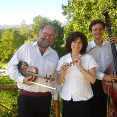 The Hungarian Trio playing in Cape Town