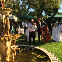 Live Entertainment for Outdoor Event in Cape Town