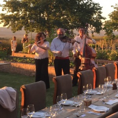 Live Music for Outdoor Wedding in Cape Town